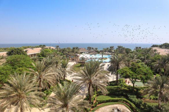 View from our room at Fujairah Rotana, UAE