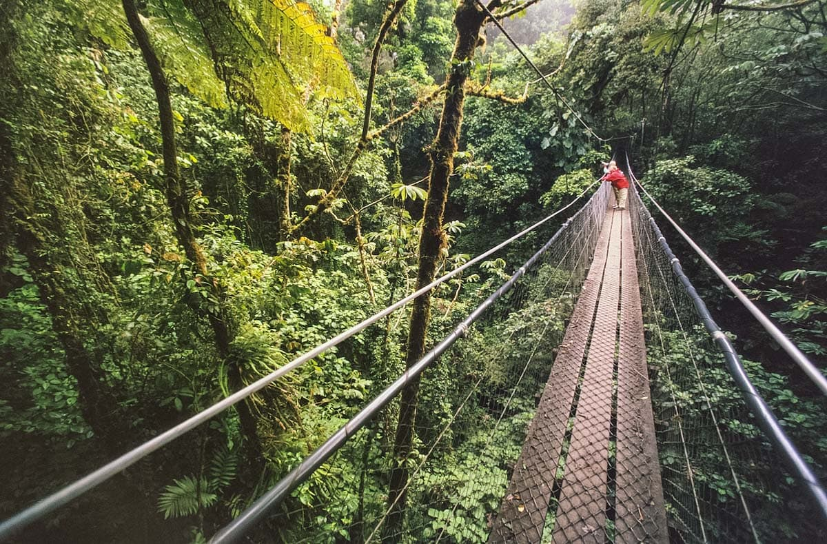 Skybridge in Monteverde Cloud Forest