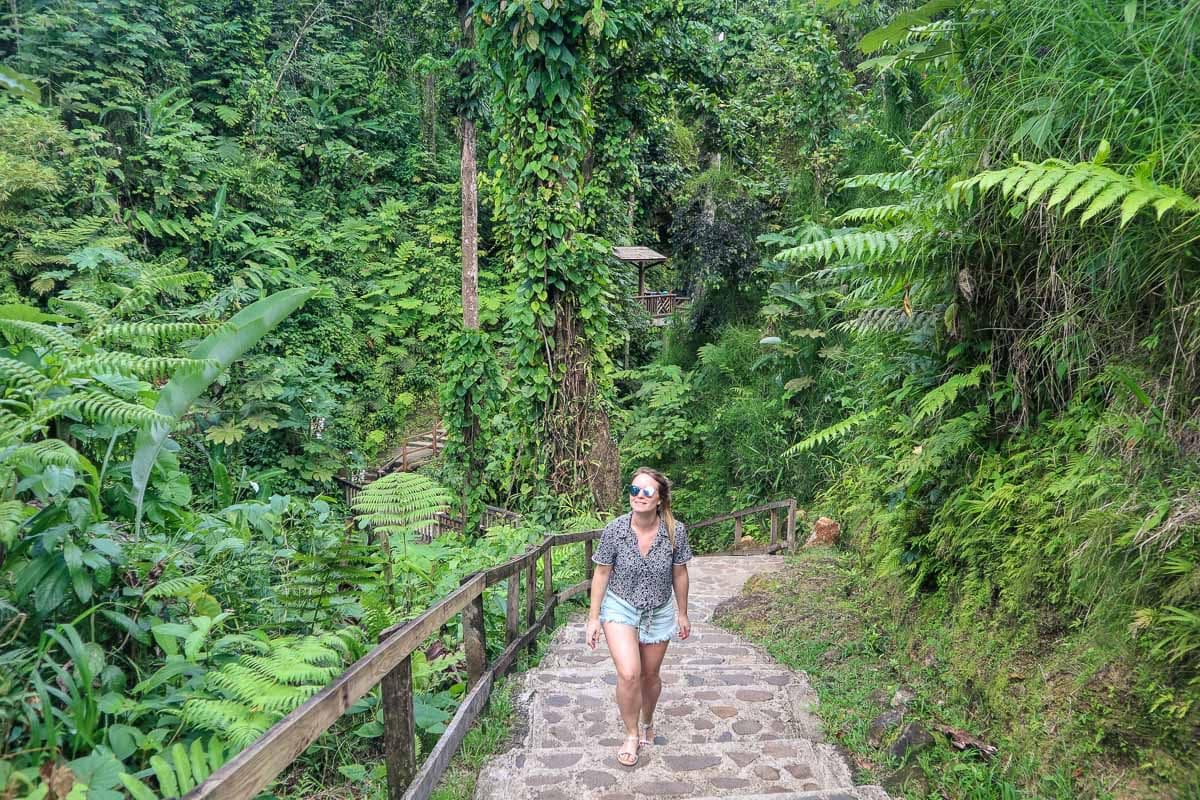 Trekking to the Emerald Pool, Dominica