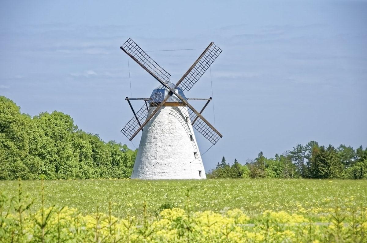 Pretty Estonian countryside