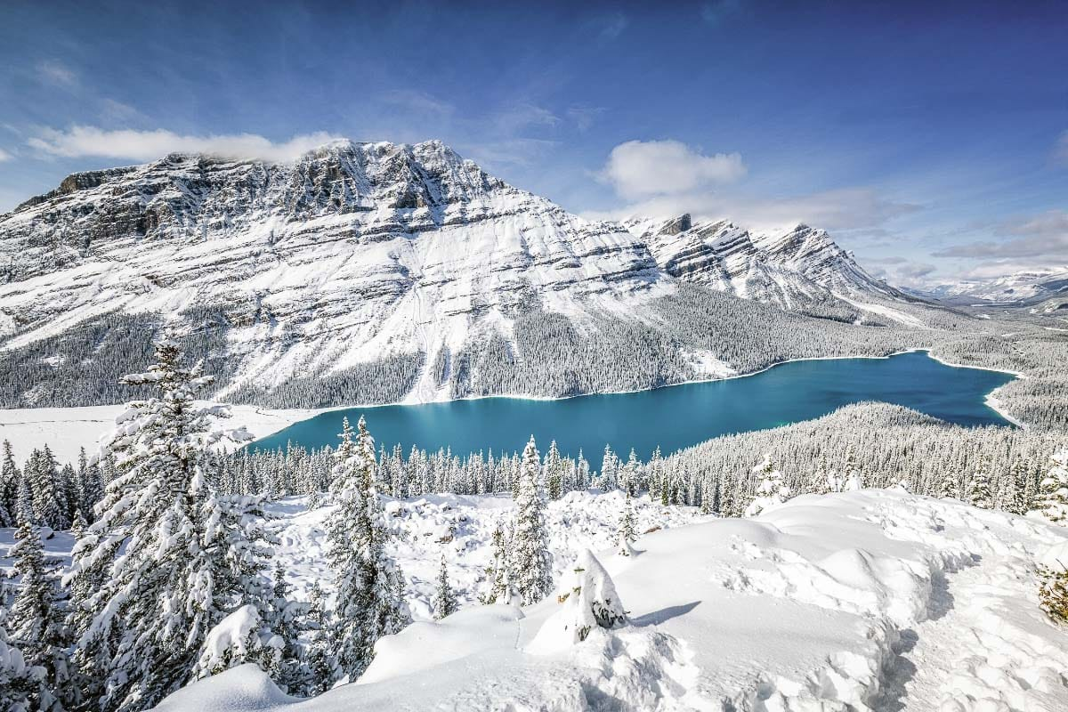 Spectacular views in Alberta in winter