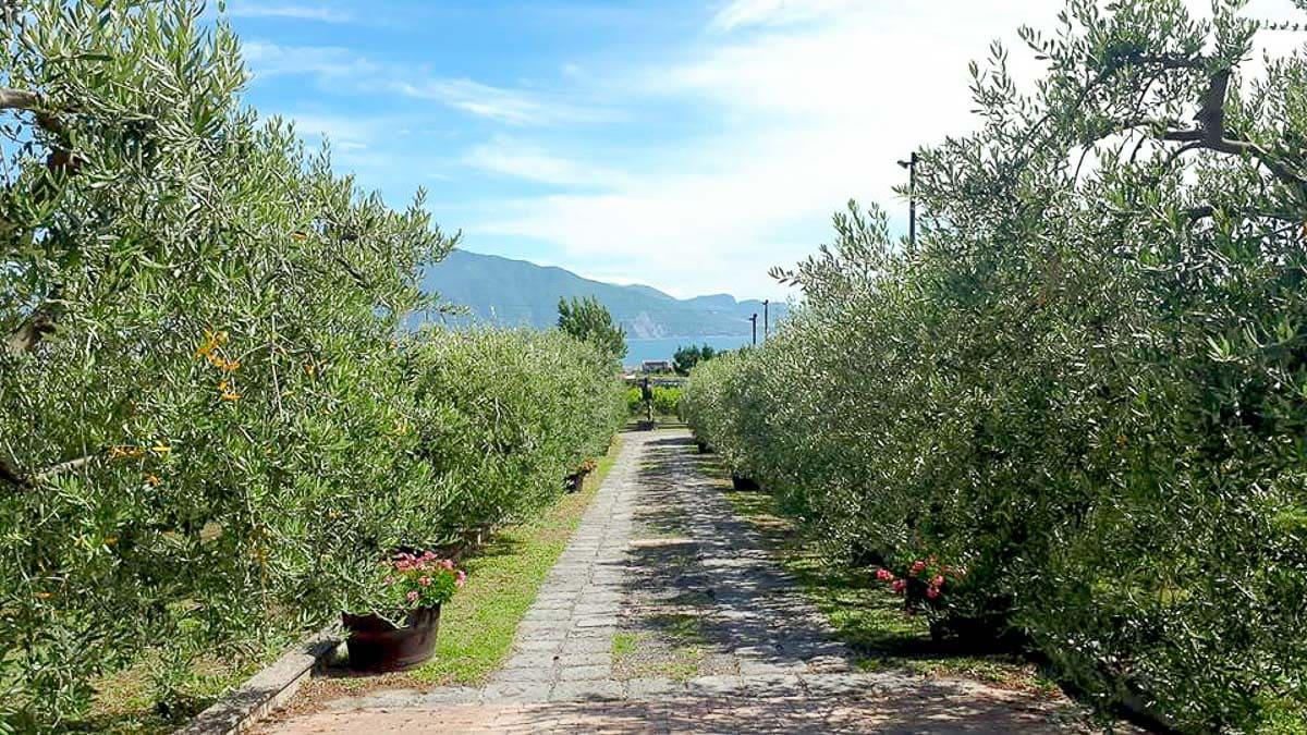 Sentiero degli Dei, Italy