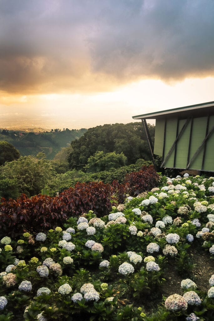 Chayote Lodge in Naranjo, Costa Rica