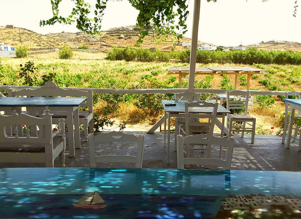 How about going wine tasting at Vioma Vineyard on your luxury holiday in Mykonos