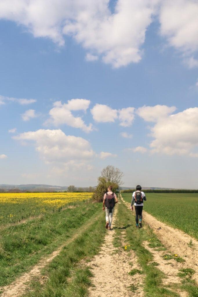 Pretty views on the Wye walk in Kent