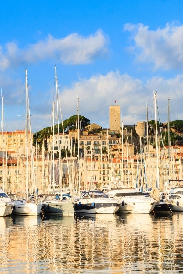 Yachts in Cannes Marina