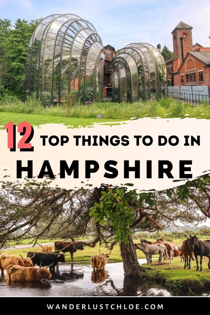 things to do in hampshire