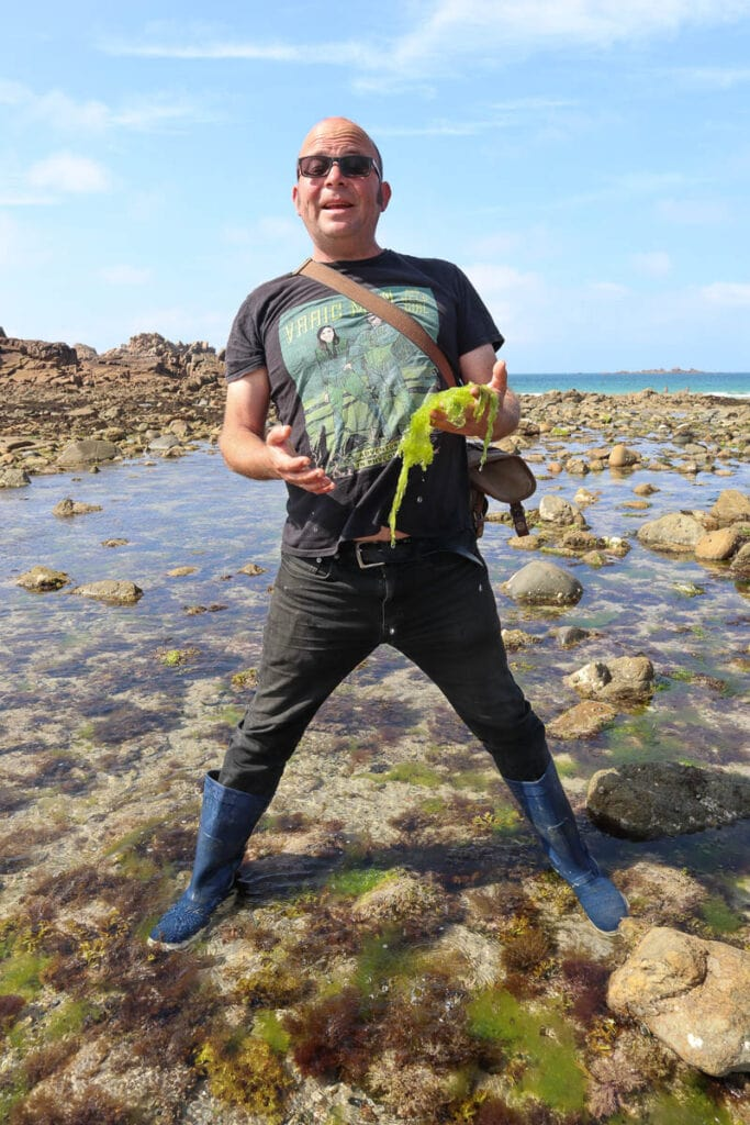 Seaweed tour in Guernsey